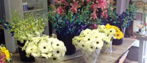 just-flowers-joburg-florist-back-2