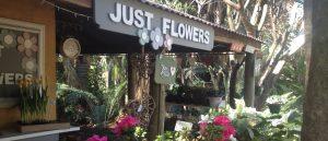 just-flowers-joburg-florist-front