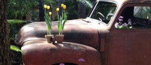 just-flowers-joburg-florist-truck